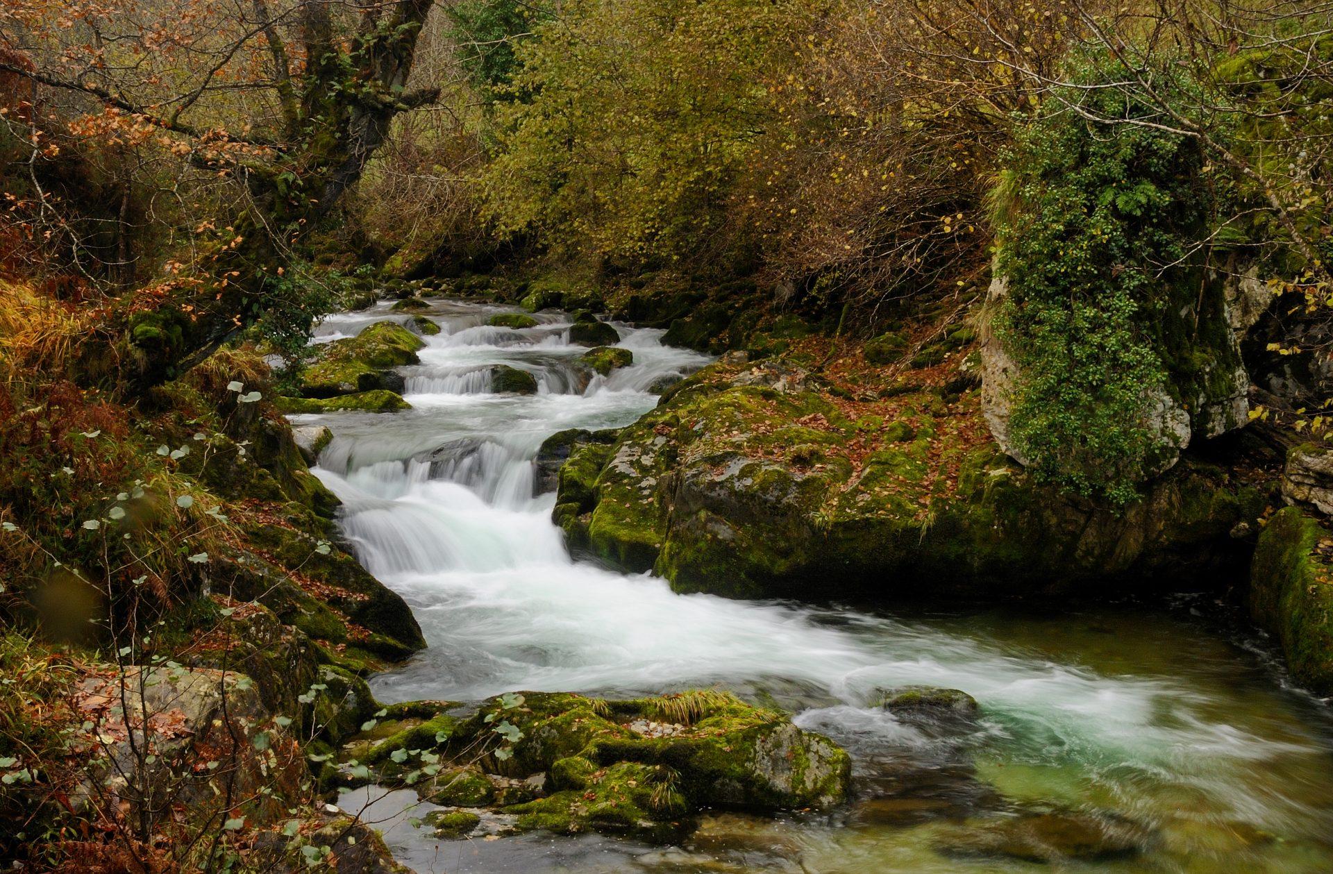 Las hoces del río Casaño